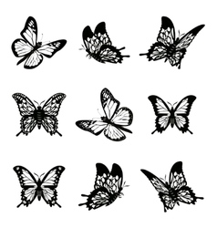 Butterfly of silhouette icon set vector image