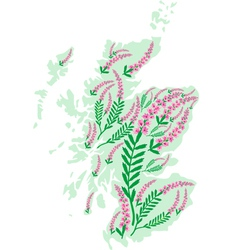 image map of Scotland with heather flowers vector image vector image