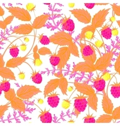 raspberry pattern doodle seamless pattern vector image