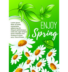 spring flower poster for springtime holiday design vector image vector image