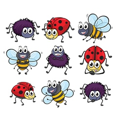 A spider a ladybug and a bee vector