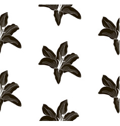 Black shape seamless pattern with drawn lilies vector