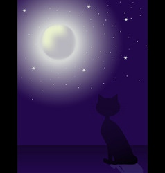 cat silhouette sitting on a roand looking at th vector image