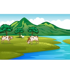 Cows and goat at the riverbank vector