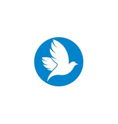 Dove logo template icon vector