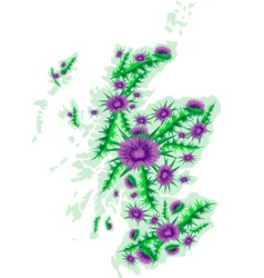 Image map of Scotland with thistle flowers vector