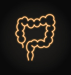 neon large intestine icon in line style vector image