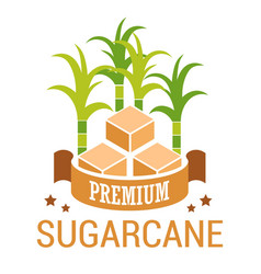 sugarcane cubes natural brown sugar isolated vector image