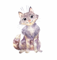 Watercolor gray kitten isolated on white funny vector