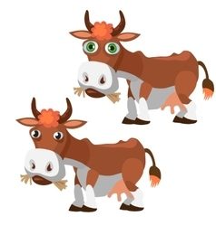 Two funny brown cow in cartoon style isolated vector image vector image