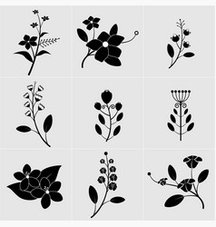 black and white flower with leaves vector image