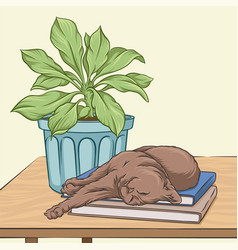 Brown cat sleeping on a wooden table vector