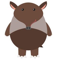 Brown tapir on white background vector
