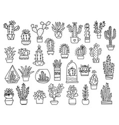 cactuses hand drawn outline cactus set cacti vector image