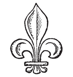 Fleur-de-lis is a flower symbol vintage engraving vector