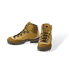 hiking shoes mountain boots vector image