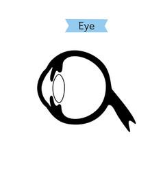 isolated of eye vector image
