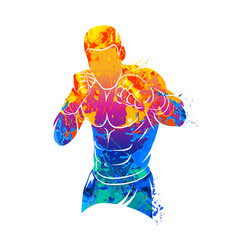 mixed martial art vector image