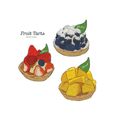 set of fruit tart blueberry mixed berry and vector image