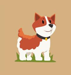 smiling welsh corgi standing on green grass dog vector image vector image
