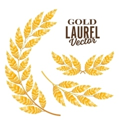 Gold Laurel Elements For Award Design vector image vector image