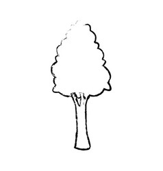 tree for forest park and plant natural image vector image vector image