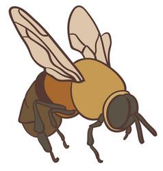 Bee eps vector