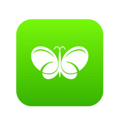 butterfly icon green vector image