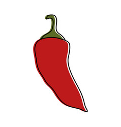 chili pepper vegetable icon image vector image