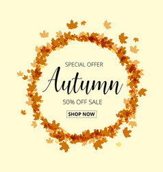colorful autumn leaves and sale text fall season vector image