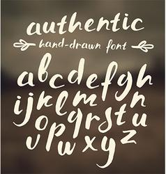 Handwritten brush script vector