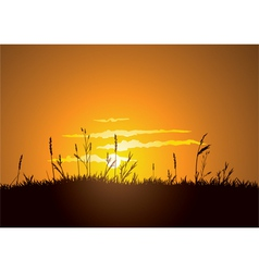 grassy sunrise vector image vector image