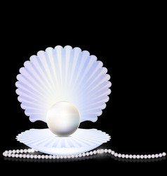 beads and shell vector image vector image