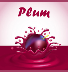 a splash of juice from a falling plum and a drop vector image vector image