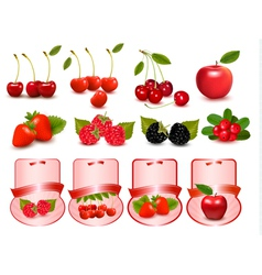 big set with fruits and labels vector image
