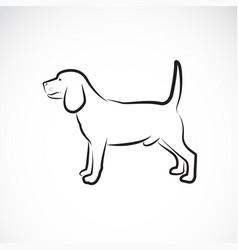 Dog beagle on white background pet animal vector