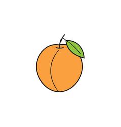 Peach solid line icon healthy fruit vector