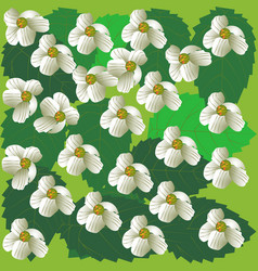 spring flowers background cherry-tree green vector image