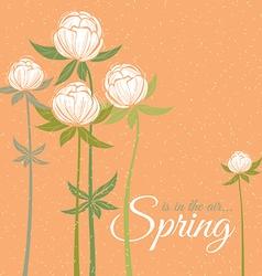 Spring wildflowers vector image vector image