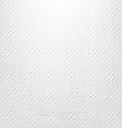 White Jeans Texture vector image vector image