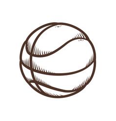 basketball balloon sport icon vector image