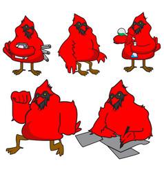 Cardinal bird colored mascot logo premium vector