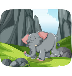 elephant running in nature scene vector image