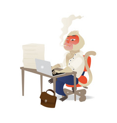 funny monkey suit smoking typing at laptop vector image