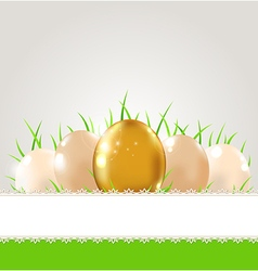 Green grass and eggs vector image