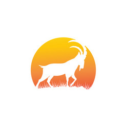 ibex and deer logo designs simple vector image