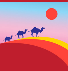 many camels vector image