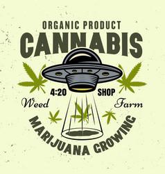 Marijuana growing colored emblem with ufo vector