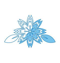 Sakura flowers traditional symbol of spring in vector