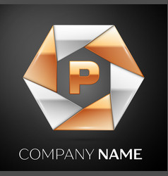 letter p logo symbol in the colorful hexagon on vector image